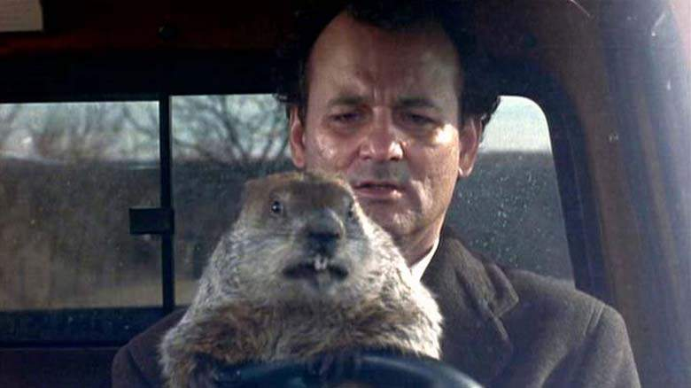 groundhog-day-2017-Punxsutawney+Phil-DebaDoTell