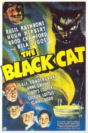 Blackcat1941