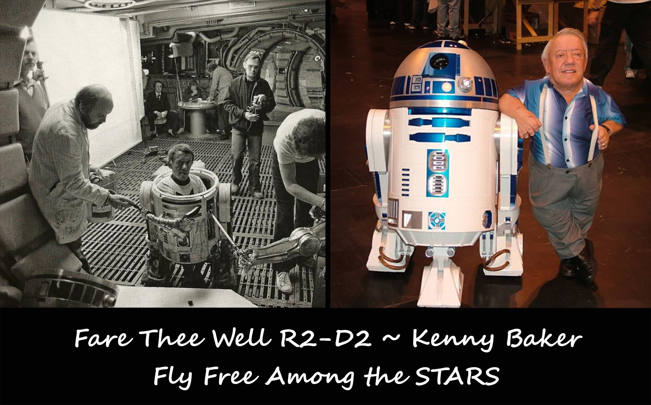 R2--D2 Blog fly Free