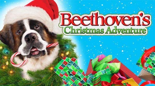 beethovens+christmas+adventure-dogmovie